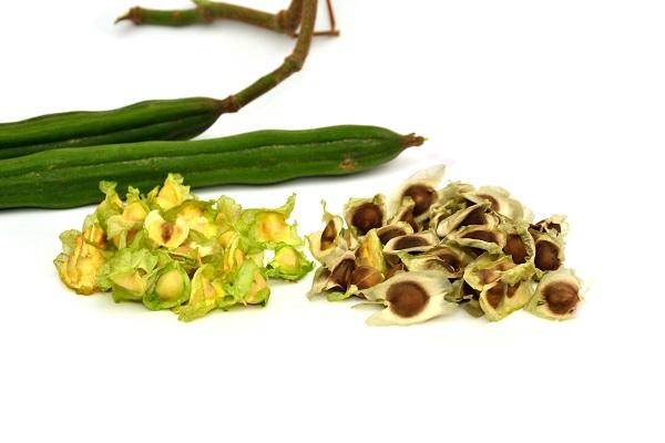 Moringa oil (ben oil)